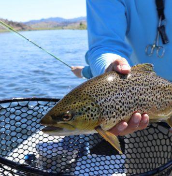 Pesca alla trota in lago